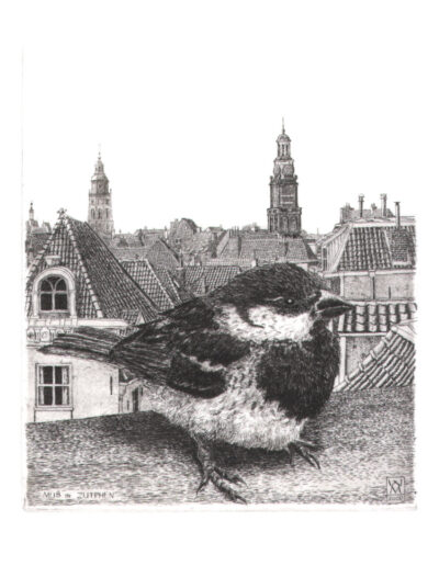 Wim van der Meij