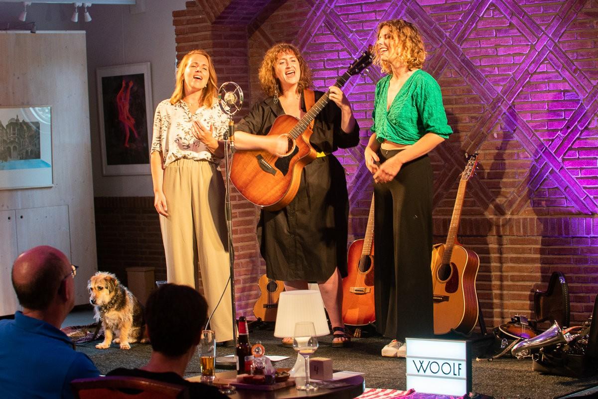 Woolf in concert - (c) Ronald Falke